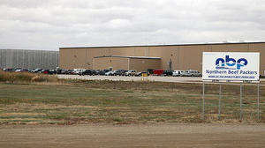Production at Northern Beef Packers restricted by city
