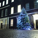 Christmas in London -- Downing Street