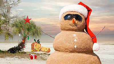Create and send your own Florida-themed holiday e-card!