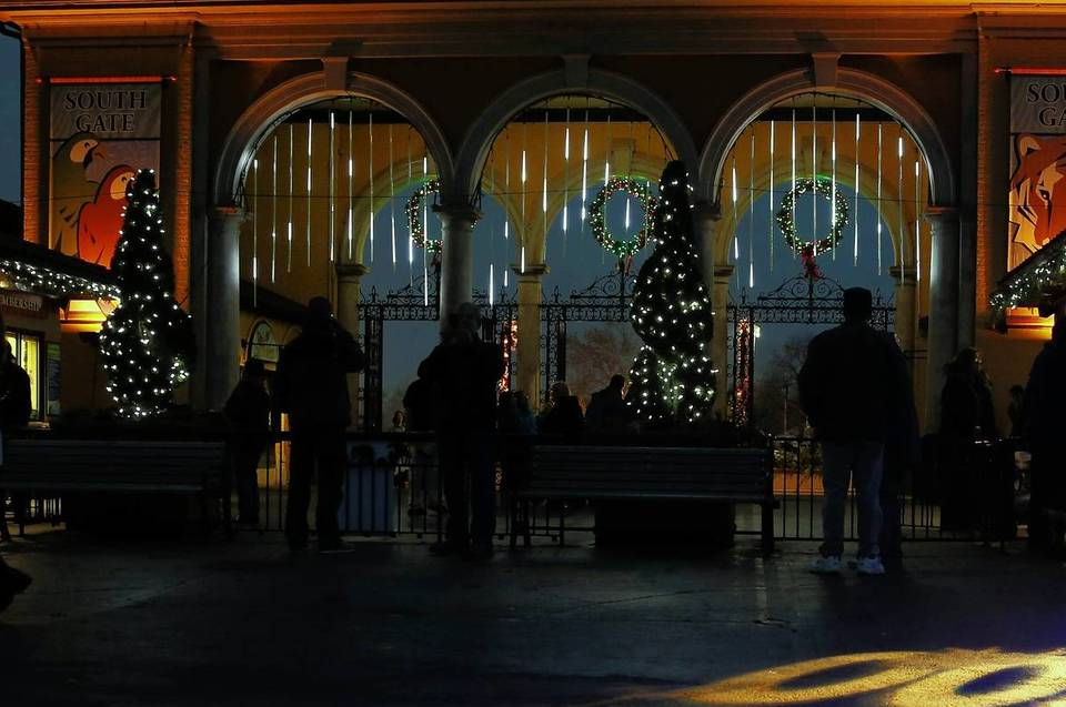 Families view the Holiday Magic lights at the Brookfield Zoo.