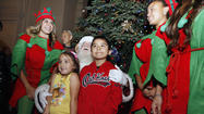 Photo Gallery: Pasadena City Hall Christmas tree lighting