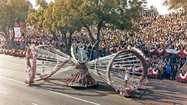 Verdugo Views: Rose Parade volunteer has rosy memories