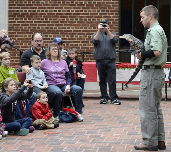 "Professional reptile handler David Dean of Reptile World, Inc. holds an American Alligator ""Okeechobee"" at the annual Children's Holiday Reception held on Saturday by the Washington County Museum of Fine Arts."
