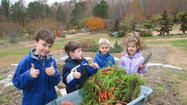 The Children's Garden at Brent and Becky's Bulbs was buzzing with activity on Monday, Nov. 19, when a group of local children came by to harvest sweet potatoes and carrots.