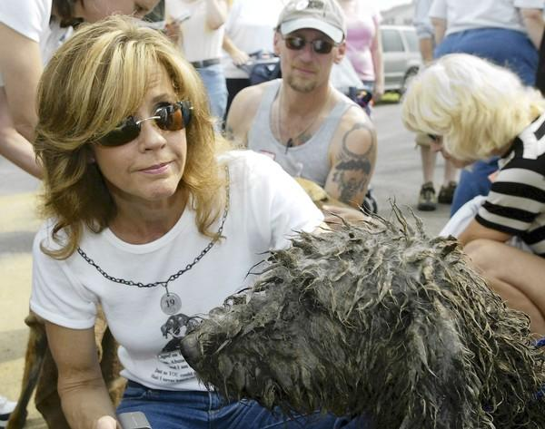 Actress and animal activist Linda Blair attends an event in Lancaster County in 2005 to raise awareness of problems at puppy mills.