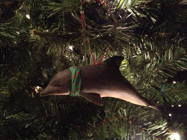 This playful dolphin ornament comes from (where else?) the Mystic Aquarium.