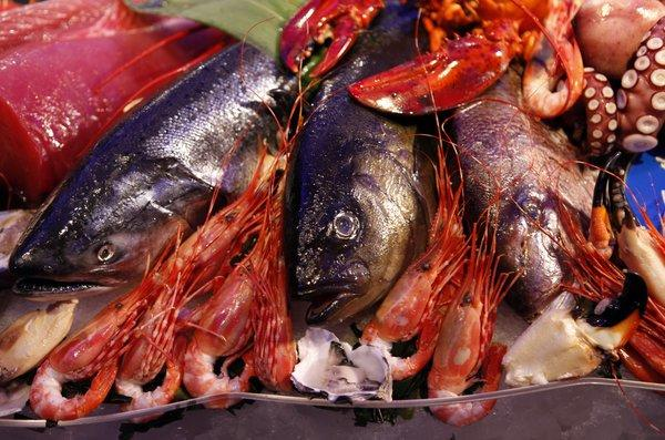 Seafood fraud