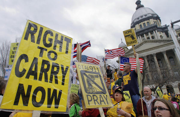 Gun owners and gun-rights supporters rally at the Illinois Capitol in Springfield.