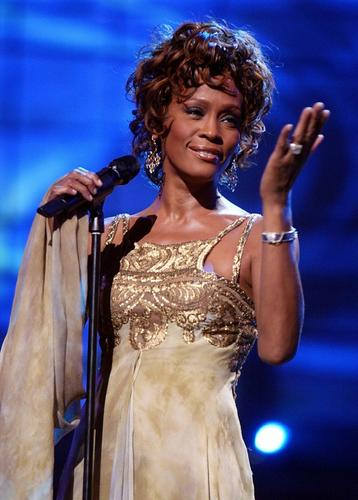 "Whitney Houston's death in February had a strong effect on the googling world. The singer's name took the top spot in Google's list of trending global searches. ""Gangnam Style"" was second."
