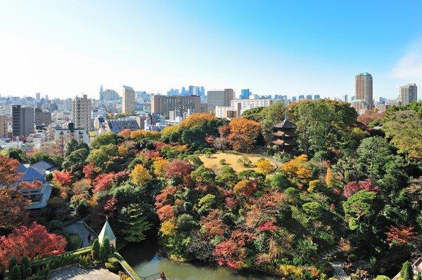 The 16-acre botanical garden is a highlight at Hotel Chinzanso Tokyo, which opens Jan. 1. It had been a Four Seasons.