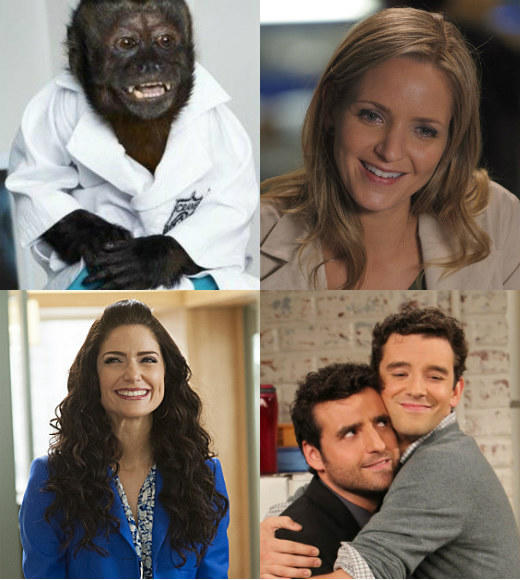 Midseason report card: Which new Fall 2012 TV series are making the grade?: So sorry, Animal Practice, The Mob Doctor, Made in Jersey and Partners, but not every show can make it.