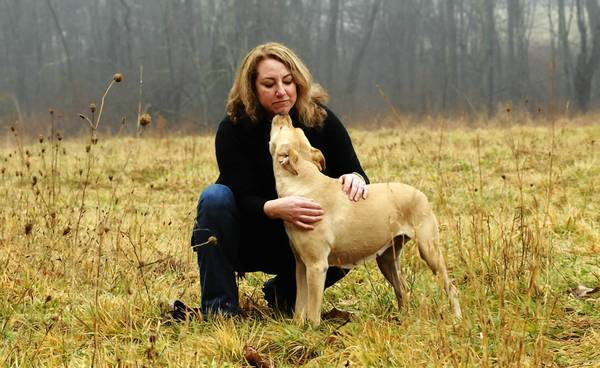 JoAnne Lipsy and her dog, Sasca, are photographed in a field close to her Bloomfield home Monday afternoon. Lipsy came home one day in April 2011 to find that her 5-year-old golden retriever-pitbull mix had eaten a dark-chocolate bar that LipsyÕs mother set on the couch. She had to rush her to the veterinarian. During the holidays, pets eat candy and other things that make them sick, driving up the number of veterinary emergencies.