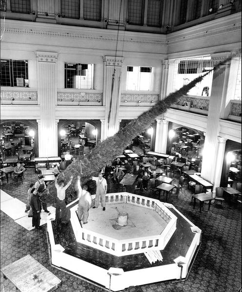 Workmen install a giant 45-foot-tall Christmas tree in the Marshall Field's Walnut Room on November 20, 1959.