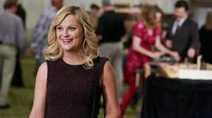 Top TV of 2012: Poehler's Leslie Knope shines on 'Parks and Rec'