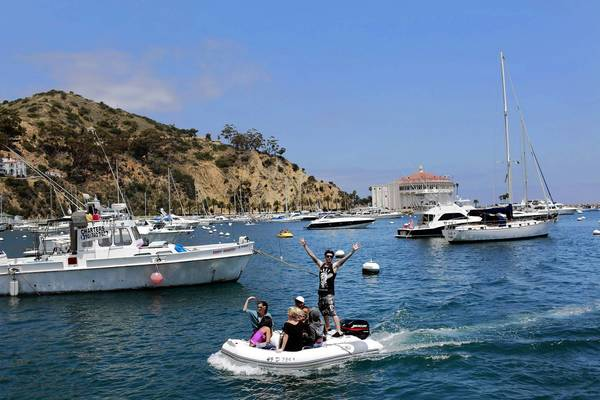 Avalon Bay at Santa Catalina Island. The Santa Catalina Island Conservancy, which manages 88% of the island, has lost half a dozen senior staff and scientists in the last year.