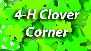4-H CLOVER CORNER: Educational hours required for upcoming livestock projects