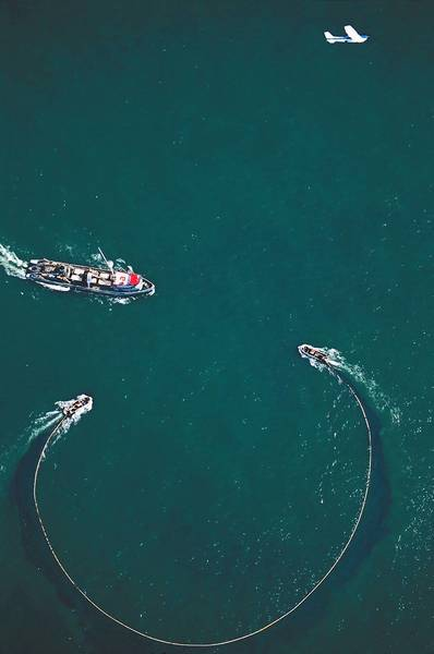 Photo courtesy of Omega Protein An aerial photo shows commercial menhaden fishing by Reedville-based Omega Protein. A spotter plane locates the schools of the small fish so the nets can haul them in.