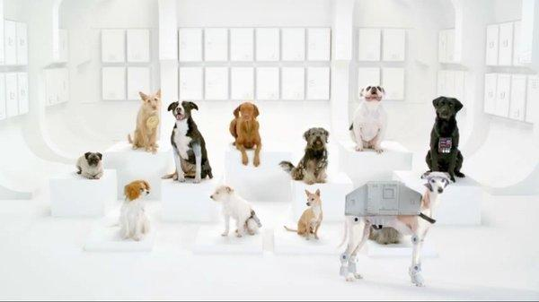 """A screenshot of Volkswagen's """"Bark Side"""" ad, which landed on YouTube's list of most popular commercials in 2012."""
