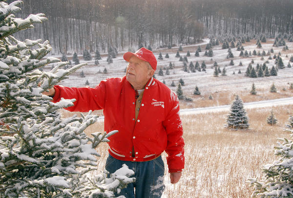 Harbor Springs tree farmer John Bosma, checks the branches of a tree on his Pleasantview Road Christmas tree farm, where he has grown trees since the 1950s.