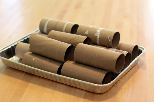 Hampton Grows wants your empty toliet paper rolls for a seed-growing project.