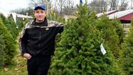 If shopping for a Christmas tree is still on your to-do list, we've got a great tip for you.