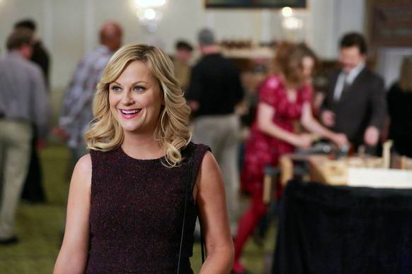 "In a year that unleashed political plotlines on ""Political Animals,"" ""Scandal,"" ""The Newsroom"" and the upcoming ""1600 Penn,"" Amy Poehler still shines as newly elected city councilwoman Leslie Knope on ""Parks and Recreation.&quo"