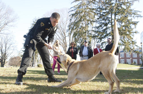 Trooper First Class CJ McCombs of the La Plata Barrack plays with Justice after a graduation ceremony for the newest K9 class to finish at the Maryland State Police Training Academy in Sykesville.