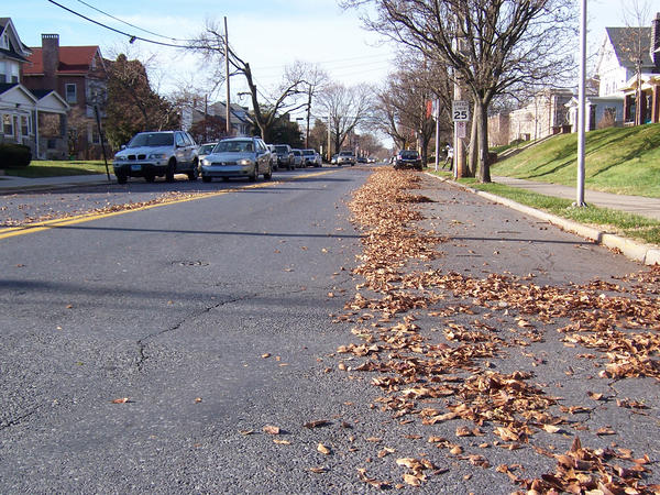 A Muhlenberg College employee uses a blower to send leaves well into the westbound lane of Chew Street just west of 22nd Street in Allentown. A college spokesman said the leaves are quickly removed from the street.