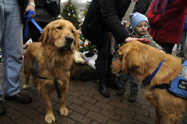 A young boy pets Abby, a golden retriever, as Barnabas stands at left at a memorial to the victims of the Sandy Hook School shooting in the center of Sandy Hook Monday. The dogs were among nine therapy dogs brought to Sandy Hook from Portage, Ind., with the Holy Cross Lutheran Church to help mourners cope with the devastating loss. Seven of the dogs were brought to a private space where the Sandy Hook students were gathered Monday.