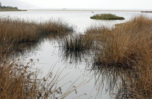 The U.S. Environmental Protection Agency is hoping to reduce polluted runoff into Malibu Lagoon.