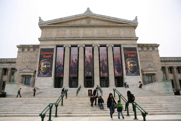 Visitors on the steps of the Field Museum.