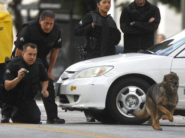 LAPD bomb squad members unleash one of their bomb-sniffing dogs after a report was received that a bomb had been planted in an LAPD patrol car.