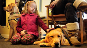 Comfort Dogs Helping Ease Town's Unbearable Burden