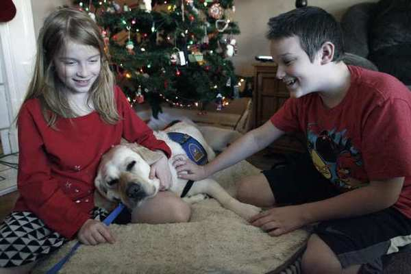 Hannah Chulack, 10, left, and her brother Luke, 12, play with their companion dog, Wednesday at their Burbank home. The two children, who both have mitochondrial disorders, received a companion dog 18 months ago through Canine Companions for Independence. The children have also been fundraising for the organization.