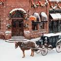 USA, Colorado, Aspen, horse and carriage in winter snow.