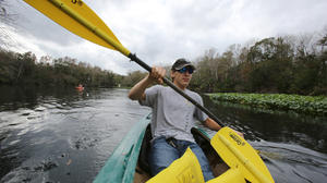 Florida rivers' low profile puts them at risk