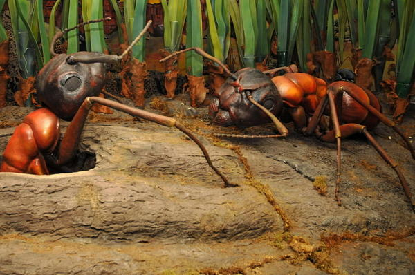 "Kids will love the museum's newest exhibit, ""Backyard Monsters,"" which features Illinois' largest collection of leafcutter ants. Two holiday-themed programs are ""Trash to Treasure"" (11 a.m.-2 p.m., Wednesday-Dec. 29), in which artist in residence Lily Emerson explores the sounds of the season, and ""Mr. Dave's Sing-a-Long"" (1 p.m., Dec. 27), a concert that introduces families to music. 2430 N. Cannon Drive; 773-755-5100 or naturemuseum.org"