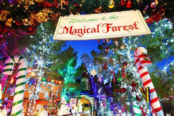 The Magical Forest, a holiday attraction in a Las Vegas neighborhood, benefits a nonprofit serving people with disabilities.