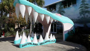 Pictures: Gatorland's big mouth turns 50