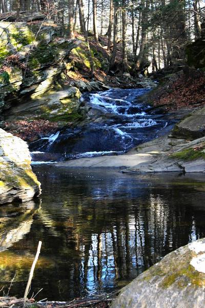 Jack's Brook is a clear, small stream with a series of cascades adjacent to the preserve's blue-blazed trail.