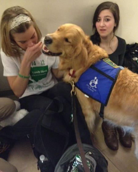 School Shooting Today In Baltimore: Maryland Dogs Offering Comfort In Newtown, Conn., In Wake
