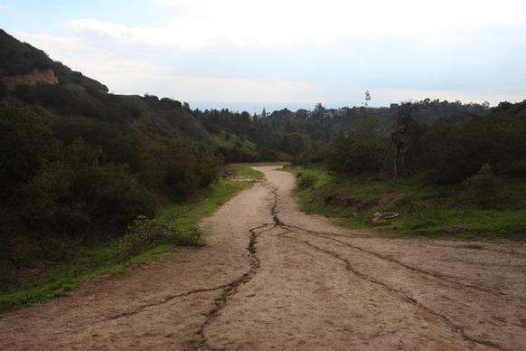The trails in Griffith Park can take you to places where it's hard to remember you're in the middle of a big city.