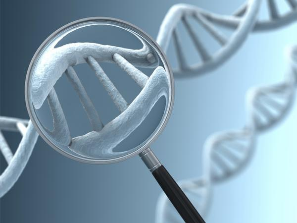 "The state's 2008 law to institute DNA collection at arrest was overturned by the Maryland Court of Appeals in April, with judges agreeing with civil liberties groups that have argued that people are presumed innocent until convicted. But the U.S. Supreme Court <a href=""http://articles.baltimoresun.com/2012-11-09/news/bs-md-scotus-dna-20121109_1_maryland-s-dna-dna-samples-king-s-dna"" target=""_blank"">will take up the case</a> and allowed collection to continue, with Chief Justice John G. Roberts Jr. calling it ""a valuable tool for investigating unsolved crimes"" and signaling that there was a ""fair prospect"" that the high court would overturn the appeals court's decision.<br><br>  Meanwhile, a federal appeals court is also set to hear a case on Maryland's carry permit process after a federal district judge struck down the state's requirement that Marylanders show a ""good and substantial reason"" to obtain a permit. The Maryland Attorney General's Office appealed the decision, and the law has been allowed to stand <a href=""http://articles.baltimoresun.com/2012-10-24/news/bs-md-concealed-carry-appeal-20121024_1_raymond-woollard-second-amendment-foundation-alan-gura"" target=""_blank"">while the case is resolved</a>."