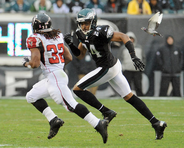 Philadelphia Eagles cornerback Nnamdi Asomugha (24) runs down Atlanta Falcons running back Jacquizz Rodgers (32) while being chased by a pigeon at Lincoln Financial Field in Philadelphia on Sunday.