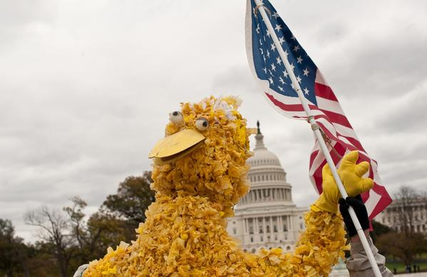 "Twitter attack on Mitt Romney's TV debate vow to cancel funding for ""Sesame Street"" led to this march in Washington."