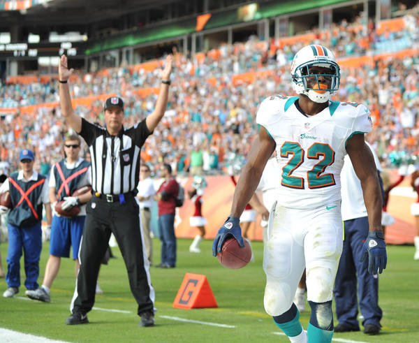 Miami Dolphins running back Reggie Bush (22) celebrates after scoring a touchdown during the third quartet against the Buffalo Bills at Sun Life Stadium. Mandatory Credit: