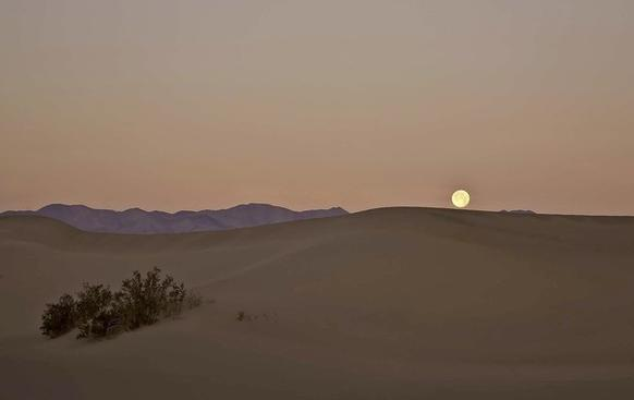 The moon sets over Mesquite Dunes with the Panamint Mountains in the background.