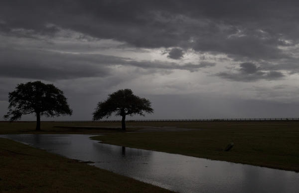 Live oaks stand under a blanket of dark clouds at Fort Monroe as heavy storms roll through the area on Wednesday afternoon.