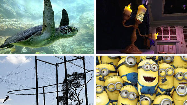 SeaWorld's TurtleTrek, Disney's New Fantasyland, the Rattlesnake at Florida Eco-Safaris and Universal Orlando's Despicable Me ride were among the best of 2012.
