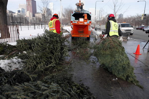 City workers mulch Christmas trees at a drop-off site in Grant Park in 2010.